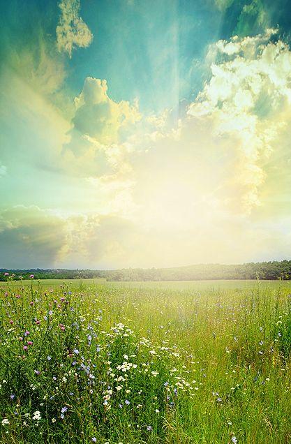 いい天気の画像(プリ画像)