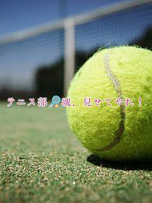部活魂の画像(テニス部に関連した画像)