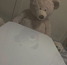 Bear🧸の画像(bearに関連した画像)