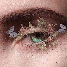 eyeの画像(Eyeに関連した画像)