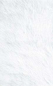 白  素材の画像(twitterに関連した画像)