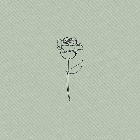 バラの画像 プリ画像