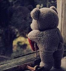 外を眺めるクマたんの画像(眺めに関連した画像)
