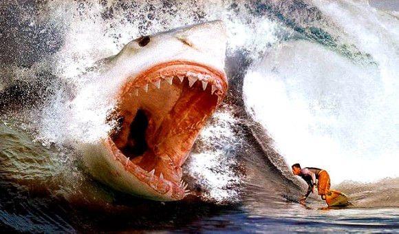 歴史上最大の古代巨大ザメ!メガロドンの高画質画像まとめ!
