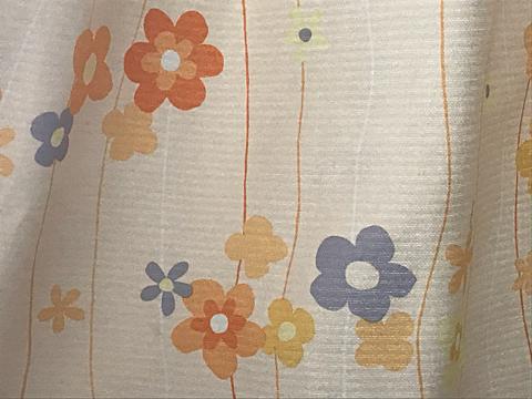 花🌼の画像(プリ画像)