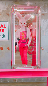 竹下通りの画像(おもちに関連した画像)