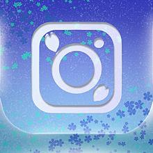 Instagramの画像(タグに関連した画像)