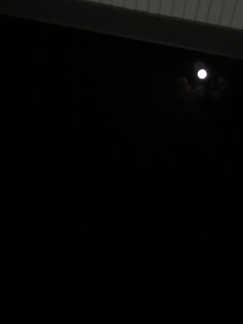 お月様の画像(プリ画像)