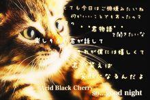 so...good nightの画像(acid black cherryに関連した画像)