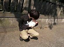 尾崎世界観 プリ画像