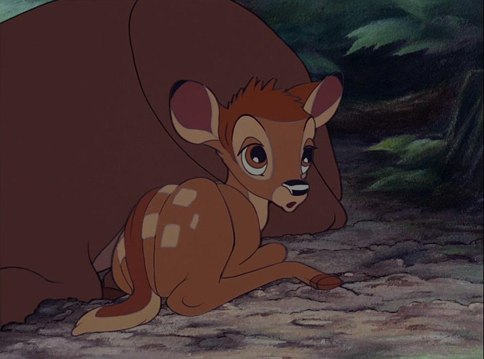 キョトンとするバンビ