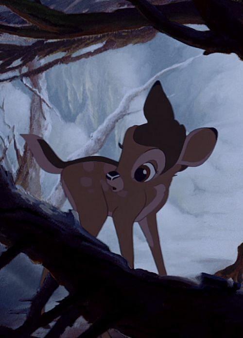 キョトンとしたバンビ
