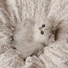 ヴィンテージ アンティーク 雰囲気 フレンチガーリーの画像(フレンチに関連した画像)