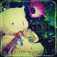 モノクロ∞ブルースカイ 歌詞画の画像(プリ画像)