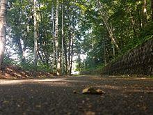 自然の画像(自然に関連した画像)