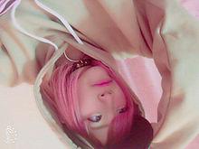 MYO虎の画像(エダに関連した画像)