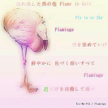 ☆ Flamingoの画像(プリ画像)
