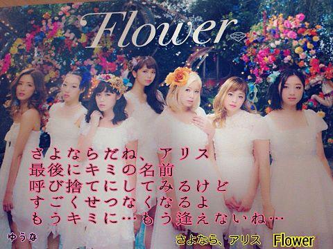 Flower「さよなら、アリス」の画像(プリ画像)