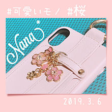 可愛いモノ 桜 プリ画像
