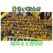 黄色い戦士 栃木SCの画像(栃木に関連した画像)