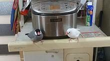 炊飯器の守り神の画像(炊飯に関連した画像)
