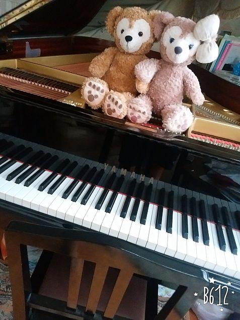 ダッフィー、シェリーメイ&ピアノの画像(プリ画像)