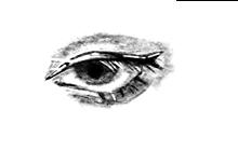 デジタル画描いた。詳細押したら綺麗に見れマス ※無断転載禁止の画像(ペイントに関連した画像)