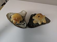 母作富士山のお皿に家のセレブわんこのごはんの画像(富士山に関連した画像)