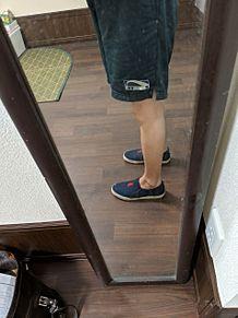 フィットネスシューズは介護靴みたいに履きやすいの画像(フィットネスに関連した画像)