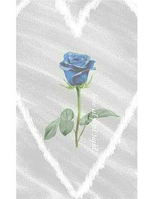 一目惚れの画像(青に関連した画像)