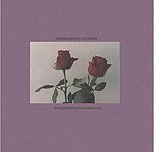 薔薇 おしゃれの画像(プリ画像)