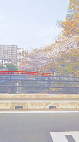 風景の画像(赤い橋に関連した画像)