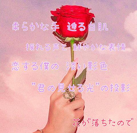 花 が 落ち た ので 歌詞