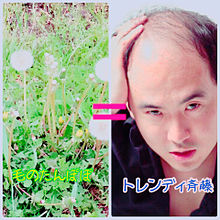 毛のたんぽぽ=トレンディ斉藤さんの画像(プリ画像)