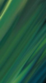 深緑の画像(景色に関連した画像)