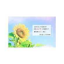 ☼ 君と夏フェス ☼の画像(プリ画像)