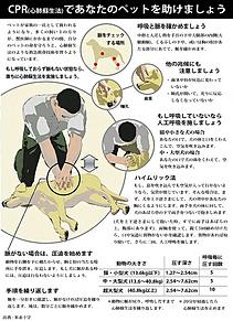 犬猫の心肺蘇生法の画像(雑学に関連した画像)