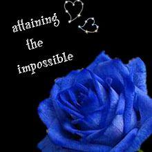 青い薔薇の意味の画像(プリ画像)