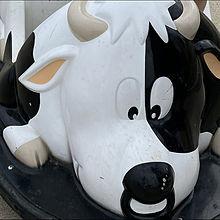 牛の画像(乗り物に関連した画像)