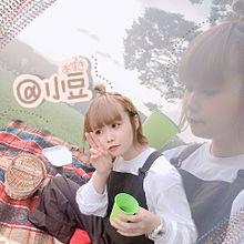 @小豆の画像(加工に関連した画像)