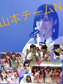山本チームNの画像(チームNに関連した画像)