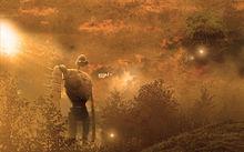 ジブリの画像(火垂るの墓に関連した画像)