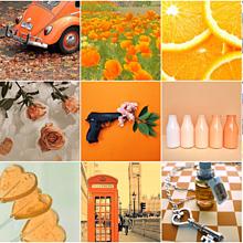 オレンジ 素材の画像(オレンジ素材に関連した画像)