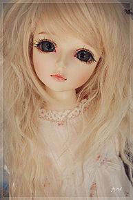 dollの画像(dollに関連した画像)