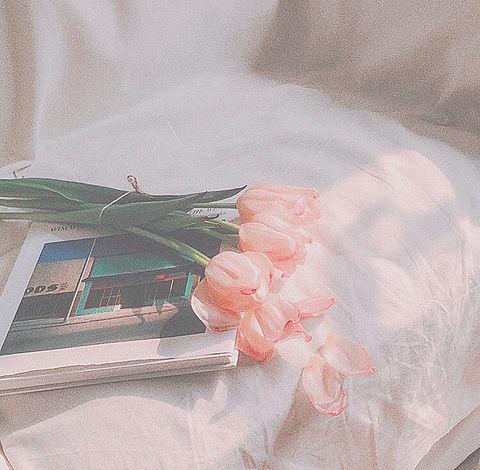 花 ノート 韓国の画像 プリ画像