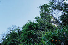 現像写真風📷の画像(沖縄に関連した画像)