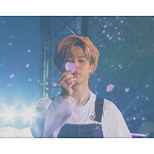 BTS  じみん🐥  🔍⤴︎ ⤴︎の画像(suga/ミンユンギ/ユンギに関連した画像)
