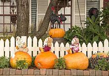 かぼちゃに乗ってるの画像(プリ画像)