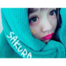 SAKURA ちゃん