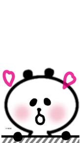 鬼♥️かわ♥️パンダ 待ち受けの画像(可愛い パンダに関連した画像)